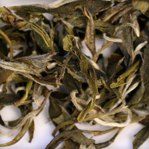 Green Peony Loose Leaf Tea