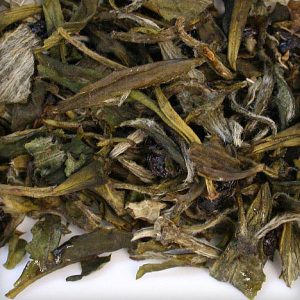 white Pai Mu Tan tea