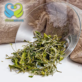 Organic Pai-Mu-Tan White Tea